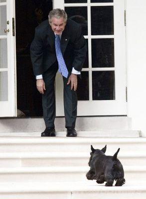 president-george-bush-Junior