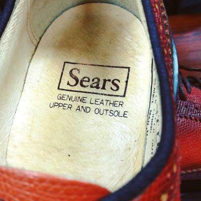 sears-longwingtip-3