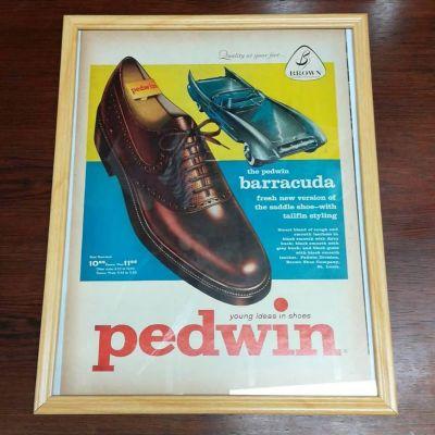 1958-pedwin-vintage-ad-barracuda