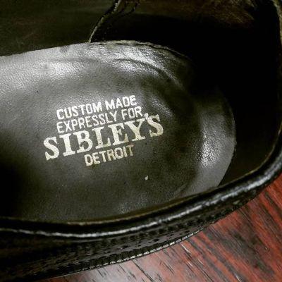 sibleys-longwingtip-7