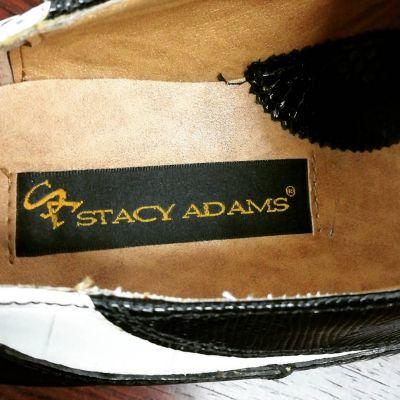 stacyadams-snake-4