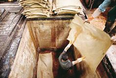 oak-bark-tanning