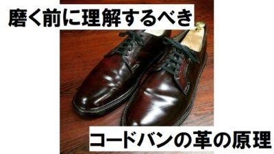 25-aoyama-kenichi-radio